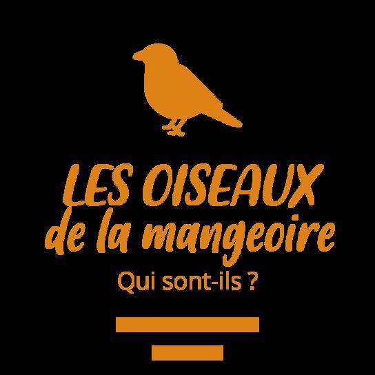 image OISEAUX.png (28.0kB) Lien vers: ?OiseauxMangeoire
